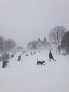 Jo Bo snowstorm smaller